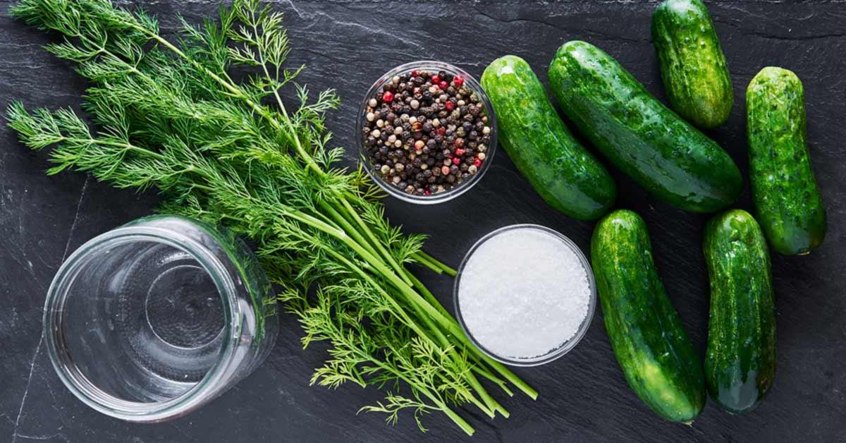Quick-Dill-Pickle-Recipe
